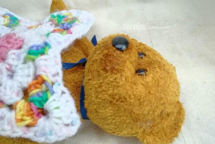 221 fuzz the bear